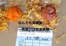 青森ひば腐食実験