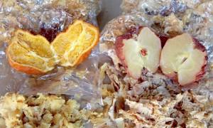 りんご、みかん実験④